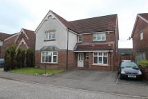 Detached property for sale in Rankine Wynd, Tullibody...