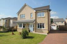 Detached property for sale in Alloa Park Drive, Alloa
