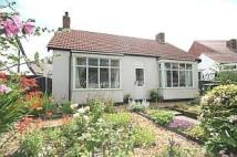 Detached Bungalow in Lilac Grove, Redcar, TS10