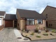 Detached Bungalow for sale in All Saints Drive, Beccles