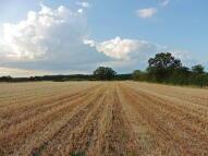 Land in Topcroft