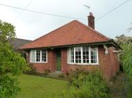 Detached Bungalow for sale in Kemps Lane, Beccles