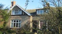 4 bed Terraced property for sale in Halesworth