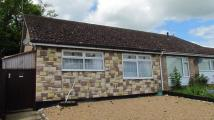 Semi-Detached Bungalow for sale in Halesworth