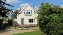 Halesworth Detached property for sale
