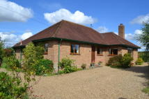 3 bed Detached Bungalow for sale in Pemberton Road, Harleston
