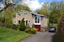 3 bedroom Detached home in Woodlands, Harleston