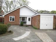 Bungalow to rent in Emmer Green