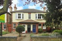 Flat in Truro Road, Bowes Park