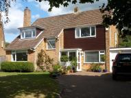 4 bedroom property to rent in Maple Hatch Close...