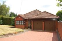 Detached Bungalow in Ranscombe Drive...