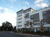2 bedroom new Apartment to rent in Cherrydown East...
