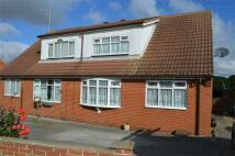 3 bedroom Semi-Detached Bungalow in 29 Hornsea Burton Road...