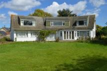 Detached Bungalow for sale in Ashcourt, Main Street...