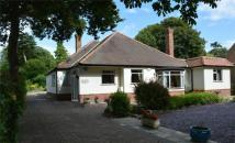 Detached Bungalow in Spinney Lodge, The Leys...