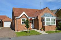 Detached Bungalow in 62, Ashcourt Drive...