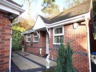 Detached Bungalow in 10 Lords Lane, The Oval...
