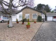 Detached property to rent in Bassett Road, Sully