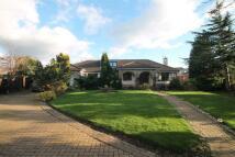5 bedroom Detached house in Gunnergate Lane...
