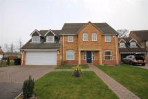 4 bedroom property in Nunthorpe Gardens...