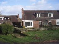 2 bed Semi-Detached Bungalow to rent in Leominster