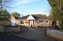 Bungalow for sale in Westley Road...
