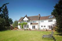 Detached home for sale in Bury Road, Great Barton...