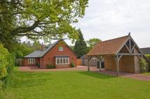 Detached property for sale in Borley Green, Woolpit...