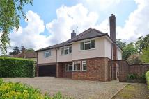5 bed Detached property for sale in Bury St Edmunds
