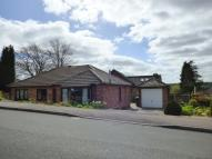 Detached Bungalow in Manor Road, Ashbourne