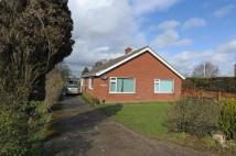 Bungalow for sale in Snape Road, Knodishall...