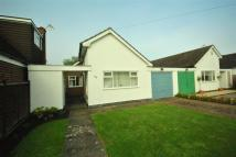 Semi-Detached Bungalow for sale in Equity Road, Enderby...