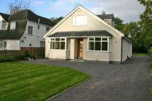5 bedroom Detached house in Whinfield...