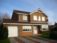 Detached house to rent in Coxhoe, Durham