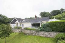 Detached Bungalow for sale in Gilfach Road, Bryn Pydew...
