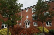 Detached house to rent in The Avenue, Darlaston