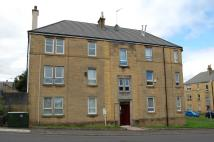 Flat in Dimity Street, Johnstone