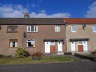 Cedar Avenue Terraced property to rent