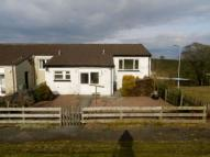 Bungalow to rent in Torrs Place...