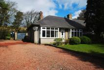 Semi-Detached Bungalow for sale in Bardon Mill