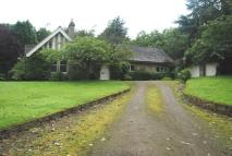 Detached Bungalow for sale in Hexham