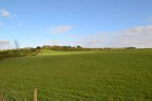 Land for sale in Stocksfield