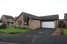 2 bed Detached Bungalow in The Crofts, Ponteland