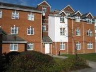 Silchester Court Flat to rent