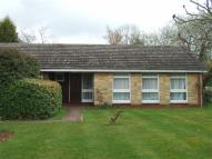 4 bed Bungalow in Maidenhead Court Park...