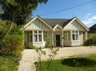 Detached Bungalow in Bournemouth Road...