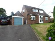 3 bed Detached Bungalow in Chestnut Close...