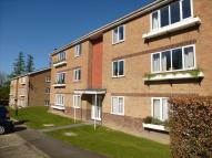 Ground Flat in Balcombe Road, Crawley