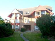 1 bed Studio flat for sale in Langney Road, Eastbourne