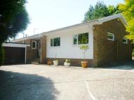 Detached Bungalow for sale in Park Avenue, Eastbourne